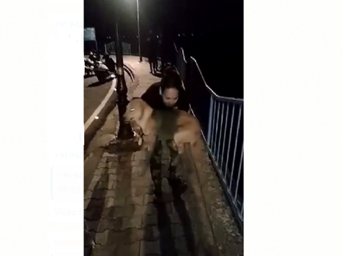 A Dog Thrown By A Man In Lake